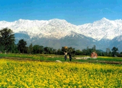 Adventure Tour Package | Holiday Packages in Chandigarh | Bir-Billing & Paragliding